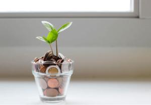 Intro to investing 1 header image- image credit: Micheile Henderson, Unsplash